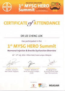 1st Mysg Hero Summit